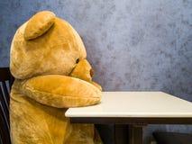 Den gulliga nallebjörnen sitter på stolen framme av att äta middag tabellen Gör det att verka som att vänta på den favorit- maträ royaltyfria bilder