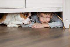Den gulliga pojken spelar på golvet på en matta med valpar av den engelska bulldoggen Arkivbild