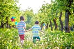 Den gulliga pysen som bevattnar växter med att bevattna kan i trädgården Aktiviteter med barn utomhus royaltyfri bild