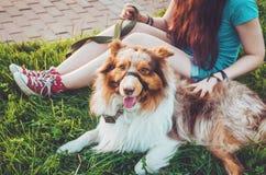 Den gulliga rödhåriga mannen daltar att koppla av på grönt gräs efter lång lek, har ett roligt utomhus Lycklig ung hipsterflicka  Arkivbild