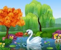 Den gulliga svanen svävar på bergfloden stock illustrationer
