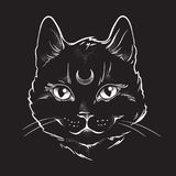 Den gulliga svarta katten med månen på hans pannalinje konst och prick arbetar Mest tapest Wiccan bekant ande, halloween eller he vektor illustrationer