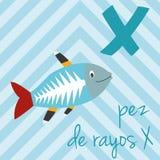 Den gulliga tecknad filmzoo illustrerade alfabet med roliga djur Spanskt alfabet: X för Pez de Rayos X royaltyfri illustrationer