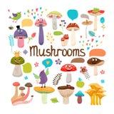 Den gulliga tecknade filmen plocka svamp med framsidor Royaltyfri Foto
