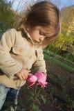 den gulliga undersökande flickan steg little Royaltyfria Bilder