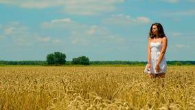 Den gulliga unga brunettkvinnan med härligt långt hår i vita korta sommarsundress står på guld- vetefält stock video