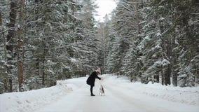 Den gulliga unga hipsterkvinnan som har gyckel i vinter, parkerar med deras hund på en ljust dag och le Flicka som spelar med bea stock video