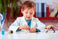 Den gulliga ungen, pojke upptäcker de inre organen och kroppen av ett djur Royaltyfria Foton