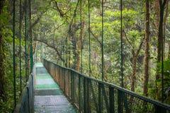 Den hängande bron i rainforesten/Costaet Rica/den Monteverde nationalparken royaltyfria bilder