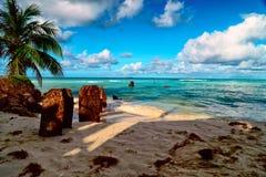 Den härliga ön av Saipan Fotografering för Bildbyråer