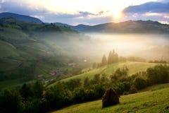 Den härliga alpina ängen med grönt gräs Soluppgång landskap på lösa transylvania kullar Holbav romania Låg tangent, mörk backgr Royaltyfri Fotografi