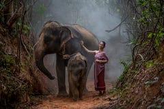 Den härliga asiatiska kvinnan bär den thai klänningen med hennes elefant, elepha Royaltyfria Bilder