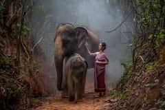 Den härliga asiatiska kvinnan bär den thai klänningen med hennes elefant, elepha Arkivbild