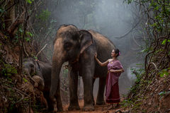 Den härliga asiatiska kvinnan bär den thai klänningen med hennes elefant, elepha Royaltyfria Foton