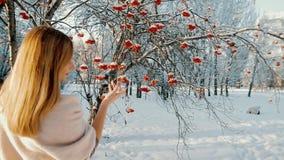 Den härliga attraktiva kvinnan i vinter parkerar lager videofilmer