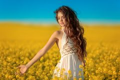 Den härliga bekymmerslösa flickan med långt lockigt sunt hår över guling våldtar fältlandskapbakgrund Attracive brunett med att b royaltyfria foton