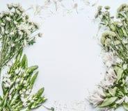 Den härliga blom- ramorienteringen med gräsplan blommar för bukettdanande på vit bakgrund royaltyfri bild