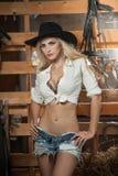 Den härliga blonda flickan med landsblick, sköt inomhus i stallet, lantlig stil Attraktiv kvinna med den svarta cowboyhatten, kor Royaltyfri Fotografi