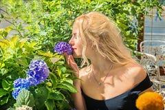 Den härliga blondinen luktar vanliga hortensior begrepp av skönhetna Arkivbild