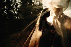 Den härliga bröllopparståenden bakom skyler royaltyfria bilder