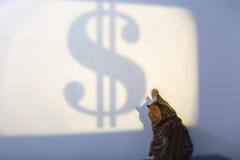 Den härliga brittiska katten försöker att fånga det Dolar begreppet av framgång, affärsstrategi royaltyfri foto