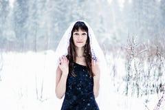 Den härliga bruden skyler under på vit snöbakgrund Royaltyfri Foto