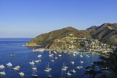 Den härliga Catalina Island arkivfoton
