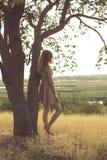 Den h?rliga dr?mlika flickan som g?r i ett f?lt i en kl?nning p? solnedg?ngen, en ung kvinna som tycker om sommarnaturen, lutade  royaltyfri fotografi