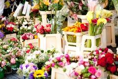 Den härliga färgrika samlingen av blommor fjädrar sommarberöm Arkivbilder