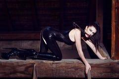 Den härliga fetischmodellen som knäfaller i katt, poserar Arkivfoton