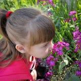 Den härliga flickan luktar blommorna royaltyfri foto