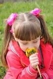 Den härliga flickan luktar blommorna royaltyfria bilder
