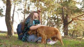 Den härliga flickan reser med husdjuret turist- flicka i skog på stopp med en hund husmor spelar med att jaga hund husmor arkivfilmer