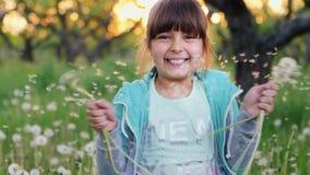 Den härliga flickan skakar maskrosor långsam rörelse stock video