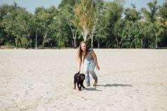 Den härliga flickan spelar med bruna labradors Royaltyfria Bilder