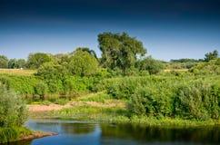 Landskap med floden och vegetation Arkivfoto