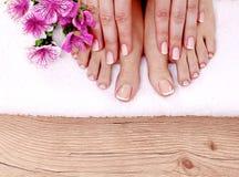 den härliga foten isolerad fransman spikar den perfekta brunnsorten för pedicuren arkivbilder