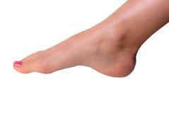 Den härliga foten med den perfekta brunnsorten spikar pedikyr på vit bakgrund Royaltyfri Bild