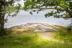 Den härliga fridsamma och stillsamma sommarsikten av en bana till en glänta vid vattnet med trädet, gräs och vaggar arkivbild