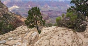 Den härliga Grand Canyon Royaltyfri Fotografi