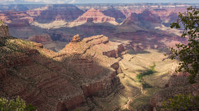 Den härliga Grand Canyon Royaltyfria Bilder