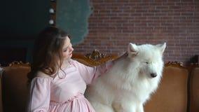 Den härliga gravida flickan sitter i en soffa och daltar hennes stora vita hund lager videofilmer