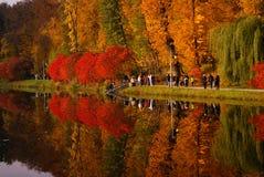 Den härliga hösten parkerar med träd och en sjö arkivbild
