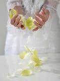 Den härliga handen med perfekt fransk manikyr på behandlat spikar hol Royaltyfri Fotografi