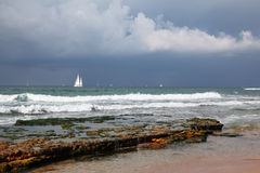 den härliga horisonten seglar white Royaltyfri Bild