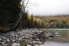 Den härliga kanasfloden i dimma Arkivfoton