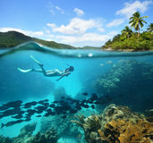 Den härliga korallreven med raddor fiskar och en kvinna fotografering för bildbyråer