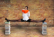 Den härliga kvinnan läser en bok Arkivbilder