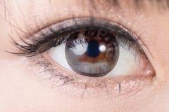 Den härliga kvinnan synar med långa ögonfrans Arkivbilder
