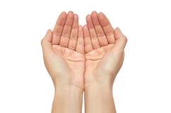 Den härliga kvinnliga handen ber gest bakgrund isolerad white Arkivbilder